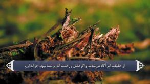 ترجمه فارسی سوره نساء
