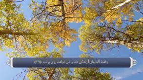 ترجمه فارسی سوره نجم